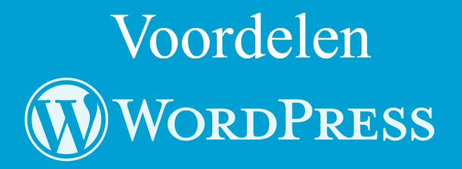 Voordelen wordpress webshop
